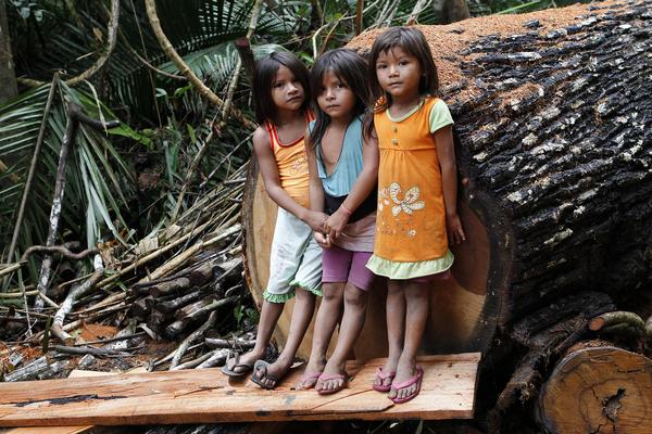 brazilian amazon indigenous children