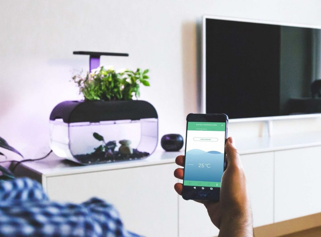 The EcoGarden: A smart interactive ecosystem to grow your own herbs