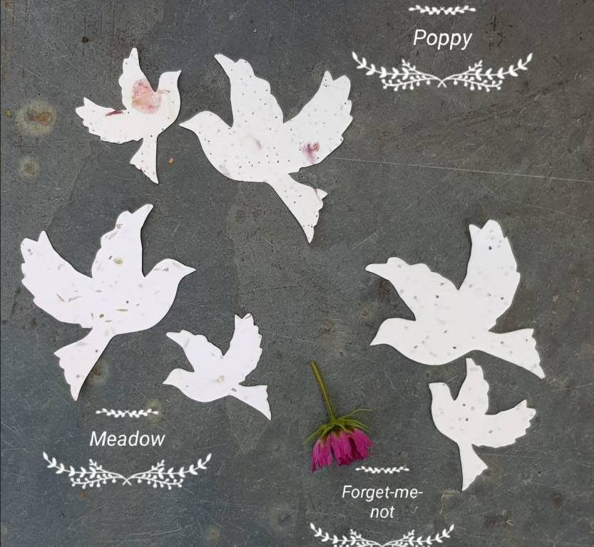 Xmas Gift Ideas Wildflower Seed Paper Doves Life Soul Magazine